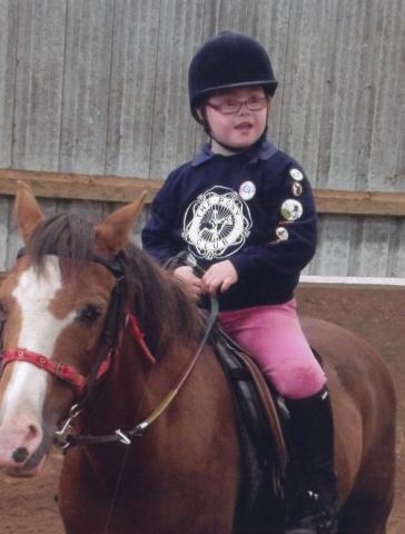Daisy Horse