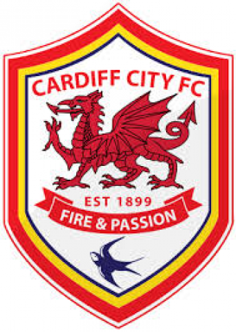 Cardiff City Foobtall Club